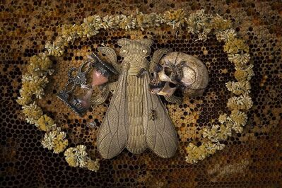 Anne De Carbuccia, 'Imperial Bee', 2014