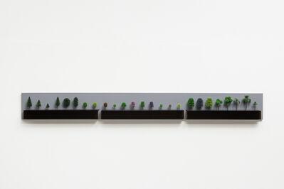 Ana Luiza Dias Batista, 'Mostruário de Árvores para maquete (Showcase model for trees) ', 2003