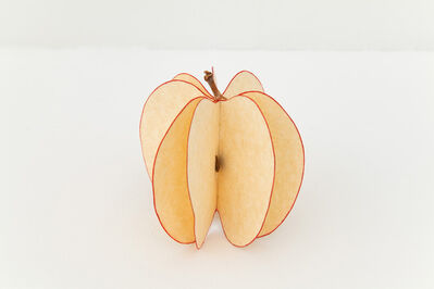 Mateo López, 'Apple', 2013
