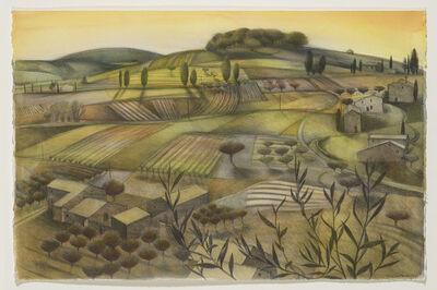 Tom Mabon, 'Patterned Fields. Provence', 2020