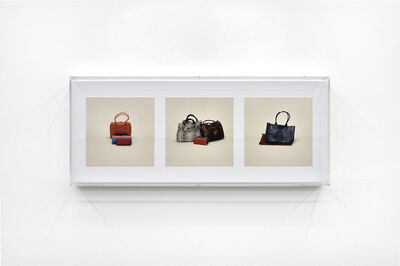 Taryn Simon, ''Leather From Endagered Species (Prohibited)'', 2010
