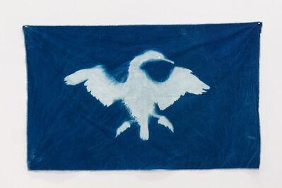 Christy Gast, 'Cormorant 1 (Straight of Magellan)', 2014