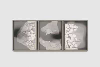 Nicolai Howalt, 'Silver migration #6, #7, #8', 2018