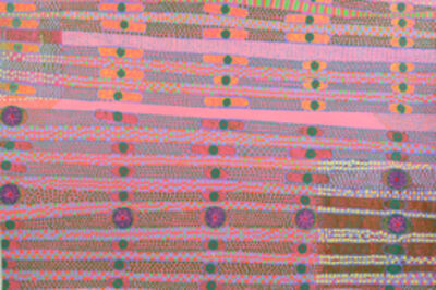 Diane Ayott, 'Plural Phrasing', 2010