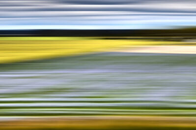 Bonnie Edelman, 'Lavender Weeds, Sweden', 2014
