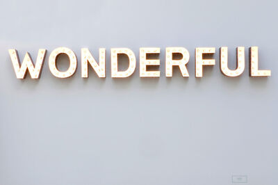 Carsten Höller, 'Wonderful', 2008