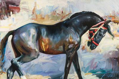 Marcus Hodge, 'Black Marwari, Pushkar', Contemporary