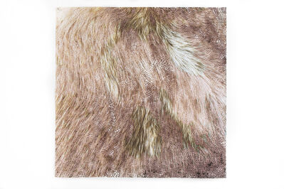 Laura Vandenburgh, 'Matter (hairy)', 2018