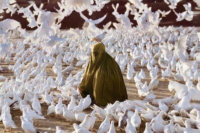 Steve McCurry, 'Pigeon Feeding Near Blue Mosque, Afghanistan, 1991', 1991