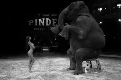 Hervé Lewis, 'BEAUTY AND THE SITTING ELEPHANT'