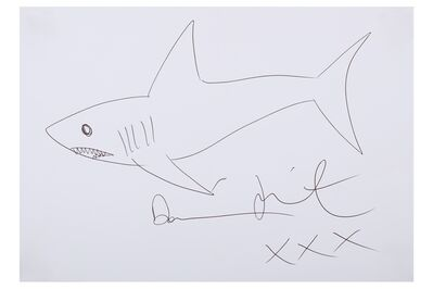 Damien Hirst, 'Shark drawing'