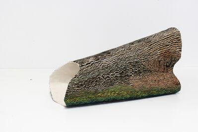 Hugh Hayden, 'Zelig 3', 2014
