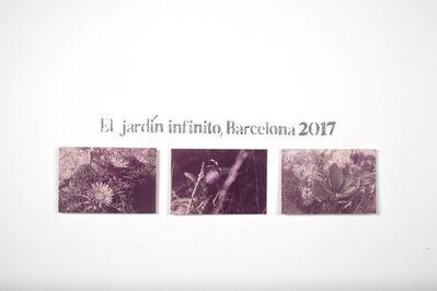 Andrea Lería, 'Jardín Infinito (Photography)', 2017