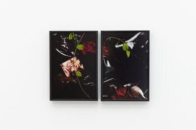 Arden Surdam, 'Liver I & II', 2019