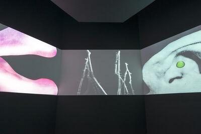 Agnieszka Polska, 'Five short videos', 2012