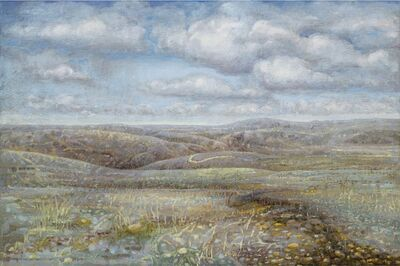 Jane Wormell, 'The Shropshire Hills'