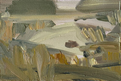Lindy Guinness, 'Nesting Paradise, Clandeboye Lake', 2019