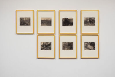 Sergey Bratkov, 'Cherry Orchard', 1984