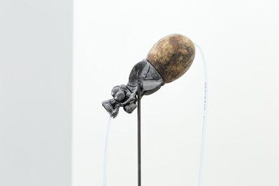 Santiago Reyes Villaveces, 'Poporo (Totumo)', 2020