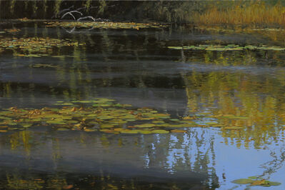 Stephen Magsig, 'Lake Okonoka Reflections', 2014