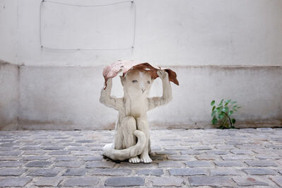 Clémentine de Chabaneix, 'Little monkey at the monsoon', 2018