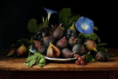 Paulette Tavormina, 'Figs and Morning Glories, after G.G.', 2010