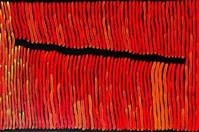 Ronnie Tjampitjinpa, 'Fire Dreaming', 2017