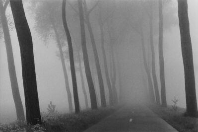 Harry Gruyaert, 'Belgium, near Bruges', 1975