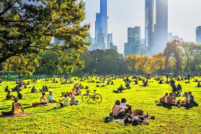 Mitchell Funk, 'Sun Bathers  Central Park Sheep Meadow with Golden Light', 2021