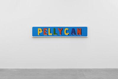 Bob and Roberta Smith, 'PELLYCAN', 1999