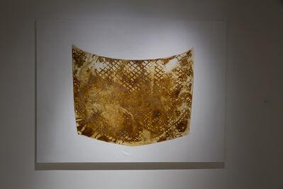 Cal Lane, 'Veiled Hood Stain #3', 2014