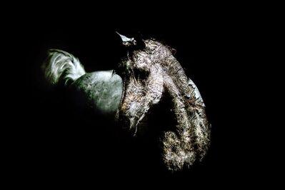 Eitan Vitkon, 'White Horse', 2013