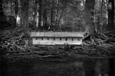 Robert Hite, 'Duckweed Palace', 2006