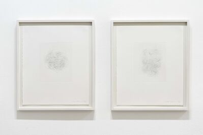 Mona Hatoum, 'Hair and there', 2004