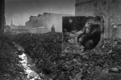 Nick Brandt, ''Alleyway with Chimpanzee' Kenya', 2014