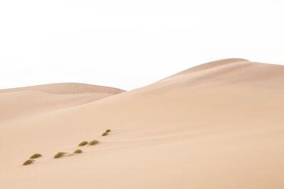 Felix Contzen, 'Dune 7', 2011