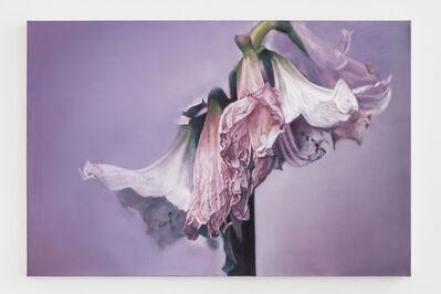 Maria Brunner, 'verwelkte Amaryllis', 2014