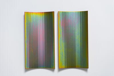 Andrea Sala, 'Tutto Tropicale', 2014