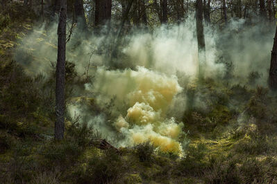 Isabelle & Alexis, 'Fontainebleau - Rays of light sculpting a yellow cloud in the forest ', 2017