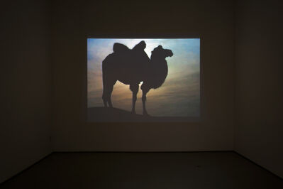 Zhao Zhao, 'Desert and Camel', 2018