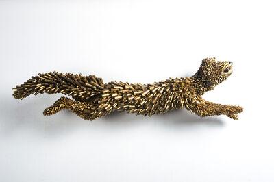 Federico Uribe, 'Gold Fox', 2017