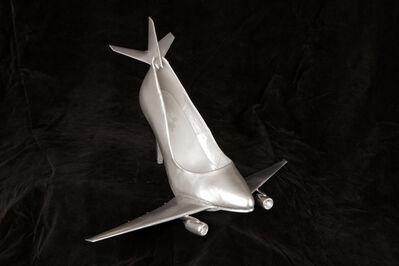 Elvira Rajek, 'ERa Shoefly - the Silver Airline', 2011