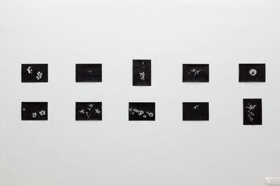 Rune Bering, 'diverse titles', 2019