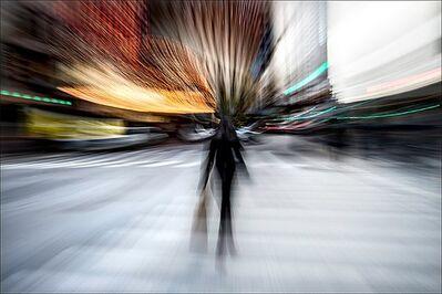 Darryll Schiff, 'Magnificence', 2014