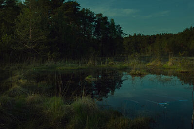 Miro Minarovych, 'Swamps', 2014