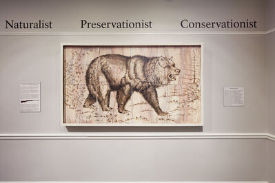Joseph Rossano, 'Grizzly Bear Engraving Painting', 2017