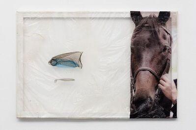 Aude Pariset, 'Stallion Dad', 2016