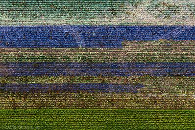 Kacper Kowalski, 'Seasons/Autumn #05', 2013