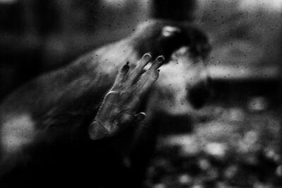 Yusuf Sevinçli, '007 - Toledo, série Oculus, 2016'