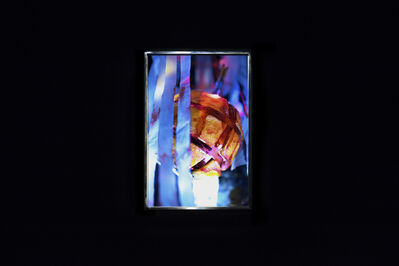 Diane Severin Nguyen, 'Polymer Luck', 2019